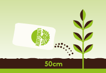 Dig Living Earth Organic Compost through the soil in your garden or your raised garden beds before planting. Dig a 50mm layer of compost into your soil.